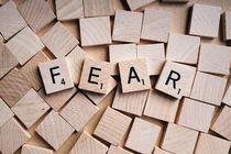 fear texted cubes by bazaar