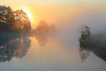 Licht und Nebel von Bernhard Kaiser