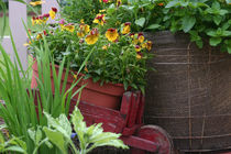 Little red cart full of flowers by June Buttrick