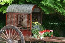 Flower Cart by June Buttrick
