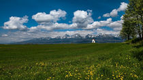 Spring under the High Tatras, Slovakia von Tomas Gregor