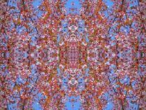 Kirschblüten Fantasie 5 von kattobello