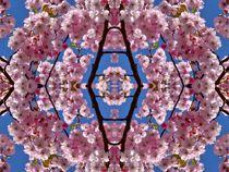 Kirschblüten Fantasie 3 von kattobello