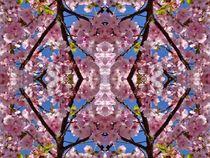 Kirschblüten Fantasie 2 von kattobello