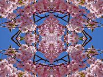 Kirschblüten Fantasie 1 by kattobello