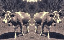 Retro Kuh Trennung von kattobello