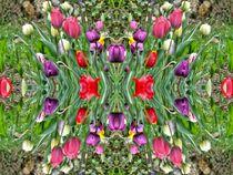 Frühlingstraum 1 by kattobello