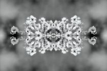 Eiskristalle 3 von kattobello
