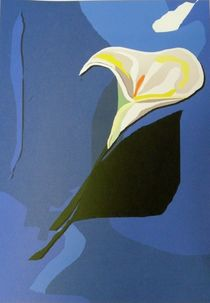 Calla by art-dellas
