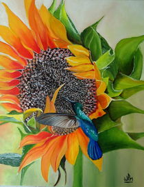Sunflower and hummingbird by Wendy Mitchell