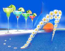 Margaritas  by Kiki de Kock