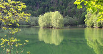 Stille am See by Dejan Knezevic