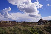 Ferienhäuser in den Dünen in Hvide Sande von magdeburgerin