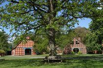 Fachwerkgiebel im Rundlingsdorf Lübeln von Anja  Bagunk