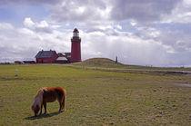 Leuchtturm Bovbjerg Fyr (Lemvig)  in Dänemark by magdeburgerin