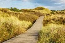 Landschaft in den Dünen auf der Insel Amrum by Rico Ködder