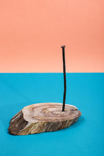 Still life with an old nail by Valentin Ivantsov