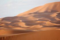 Wellen der Wüste von Martina  Gsöls