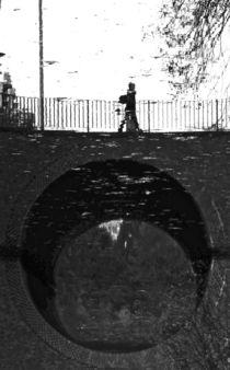 reflected I von joespics