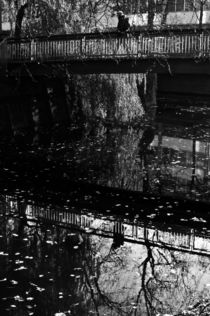 reflected XI von joespics