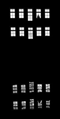 reflected von joespics
