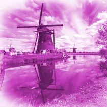 Pink Windpump  by Rob Hawkins