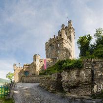 Burg Sooneck (1) by Erhard Hess