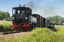 Mallet-Lokomotive 99633 | Öchsle-Bahn by Thomas Keller