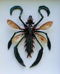 Fairytale Insektum von Andreas Deutschmann