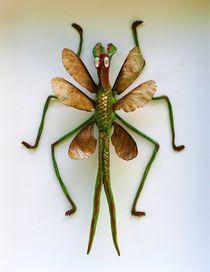 gunes prodigium (grünes Ungeheuer) von Andreas Deutschmann