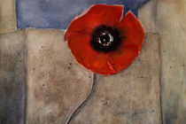 'At the wall - red poppy' by Chris Berger