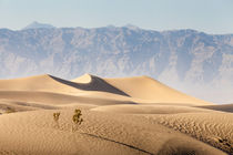 Death Valley by Florian Westermann