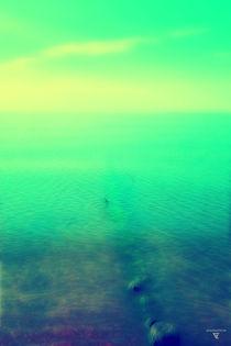 baltic sea von micha gruenberg