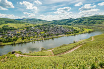 Mosel bei Pünderich 01 by Erhard Hess
