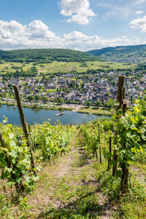 Mosel bei Pünderich 03 by Erhard Hess