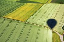Green away 384817 von Mario Fichtner