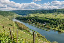 Mosel bei Pünderich 98 by Erhard Hess