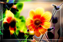 Neon - Flower by mario-s