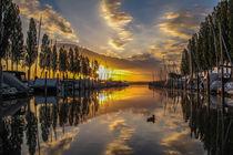 Der Jachthafen in Moos kurz nach Sonnenaufgang - Bodensee von Christine Horn