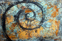 Muschel Geometrie by Olga David