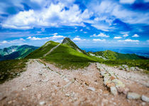 Beskid at Polish West Tatras in Summer von Tomas Gregor