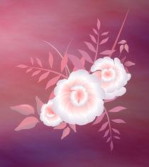 pink and white by Tim Seward