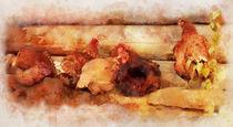 A Group Of Chickens Sleeps by Elena Oglezneva