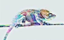 Fantastic Multicolor Chameleon by Elena Oglezneva