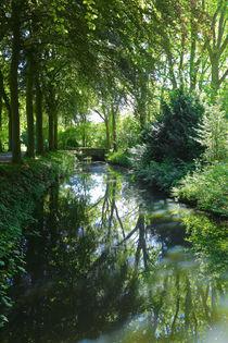 'Pflanzen am Wassergraben' von Bernhard Kaiser
