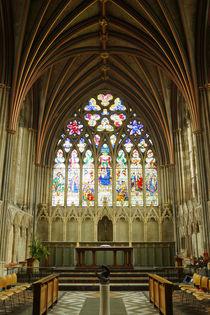 Cathedral in Exeter, Gothik Window von Sabine Radtke