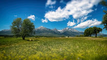 Landscape Under the Tatra Mountains by Tomas Gregor