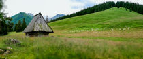 Rusinowa Polana, Tatry, Poland by Tomas Gregor
