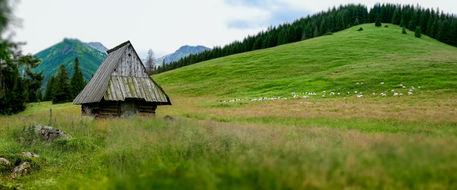Rusinowa-polana-high-tatras-poland