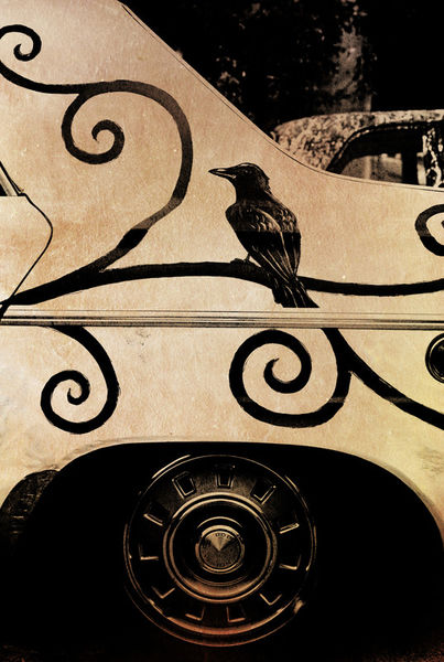 Crow-visual-art1